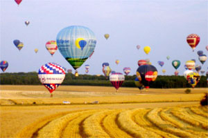 Balloons in a Thame field